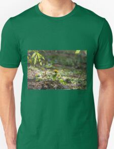 meadow at sunset Unisex T-Shirt