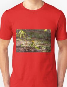 meadow at sunset T-Shirt