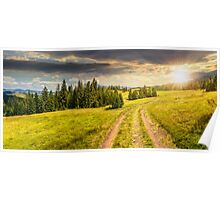 path through meadow to forest in mountain at sunset Poster