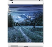 Winter in mountains meets spring in valley iPad Case/Skin