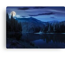 pine forest near the mountain lake at night Canvas Print