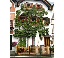 Pears grows on the house in Hallstatt Photographic Print