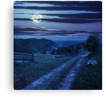 tree on hillside path through  meadow in foggy mountain at night Canvas Print
