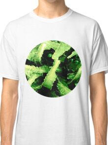 Green Dinosaur Plant Classic T-Shirt