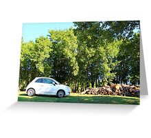 The Fiat and the Wood Pile Greeting Card