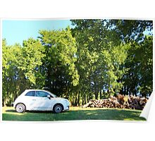 The Fiat and the Wood Pile Poster
