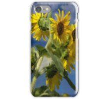 Sunflowers In The Sun iPhone Case/Skin