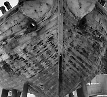 Is it a Bird? Is it a Ship? by Francis Drake