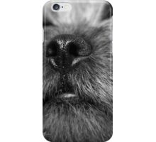 Border terrier dogs nose iPhone Case/Skin