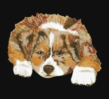 Red Merle Australian Shepherd Puppy by Barbara Applegate