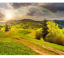 road on hillside meadow in mountain at sunset Photographic Print