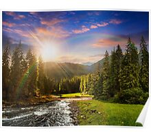 Mountain river in pine forest at sunset Poster