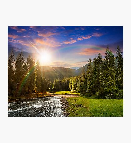 Mountain river in pine forest at sunset Photographic Print