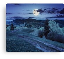 road on hillside meadow in mountain at night Canvas Print