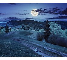 road on hillside meadow in mountain at night Photographic Print