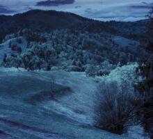 road on hillside meadow in mountain at night Sticker