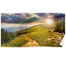 pine trees near valley in mountain at sunset Poster