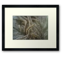 Wool Framed Print