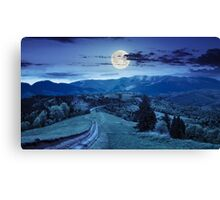 road through the meadow on hillside at night Canvas Print