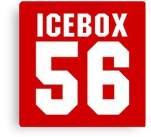 becky icebox Canvas Print