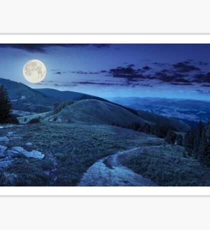 pine trees near valley in mountain at night Sticker