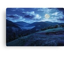 flowers on hillside meadow in mountain at night Canvas Print