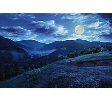 flowers on hillside meadow in mountain at night Photographic Print