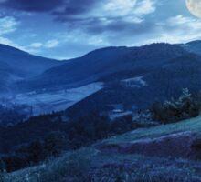 flowers on hillside meadow in mountain at night Sticker