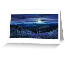 wild flowers on the mountain top at night Greeting Card