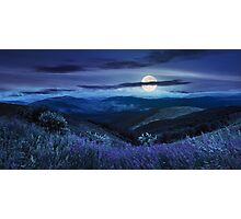 wild flowers on the mountain top at night Photographic Print