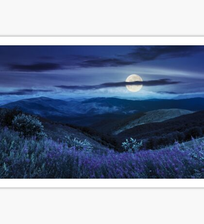 wild flowers on the mountain top at night Sticker