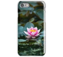 Lily Pad Summer Flower iPhone Case/Skin