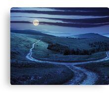 path through highland meadows at night Canvas Print