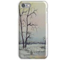 Serene Winter Scene iPhone Case/Skin
