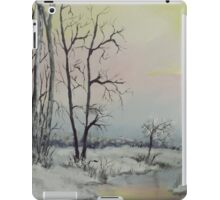 Serene Winter Scene iPad Case/Skin