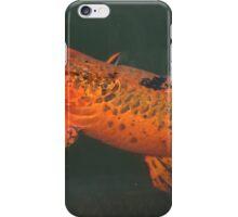 FELLOWS LAKE FISH iPhone Case/Skin