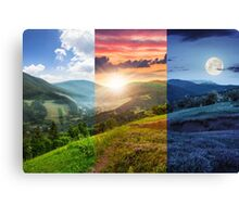 flowers on hillside meadow with forest in mountain Canvas Print