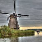 Going Dutch for 12 months  by John44
