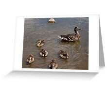Adventures with Mama Greeting Card