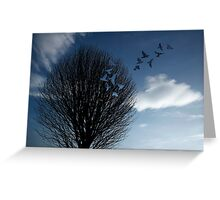 Bird Roost Greeting Card