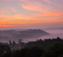 Misty Sunrise by Chris Thaxter