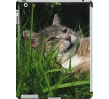 Tabby cat playing with toy mouse iPad Case/Skin