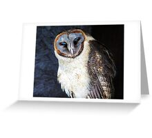 Ashy Faced owl Greeting Card