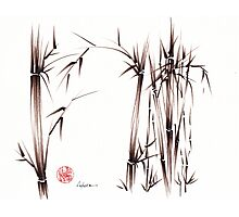 Garden of Dreams - sumie ink brush pen drawing on paper Photographic Print