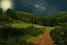 Hazy Moon Meadow by RC deWinter