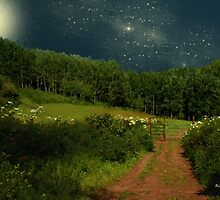 Hazy Moon Meadow by RC deWinter
