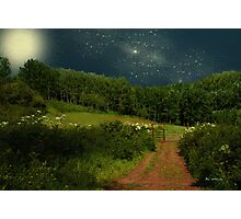 Hazy Moon Meadow Photographic Print