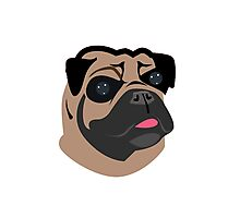Cute Pug Dog Face Cartoon  Photographic Print