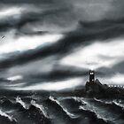 Storm by Richard Eijkenbroek