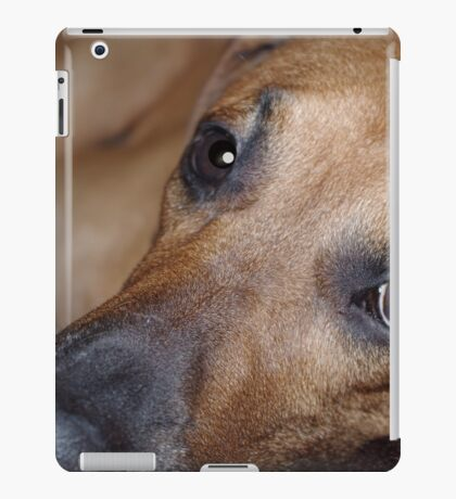 Bored Pooch iPad Case/Skin